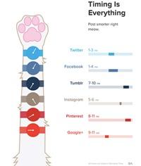 social timing 200pix